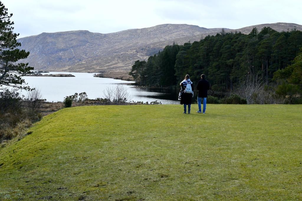 Glenveagh park