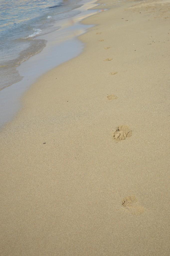 Foot steps Milos