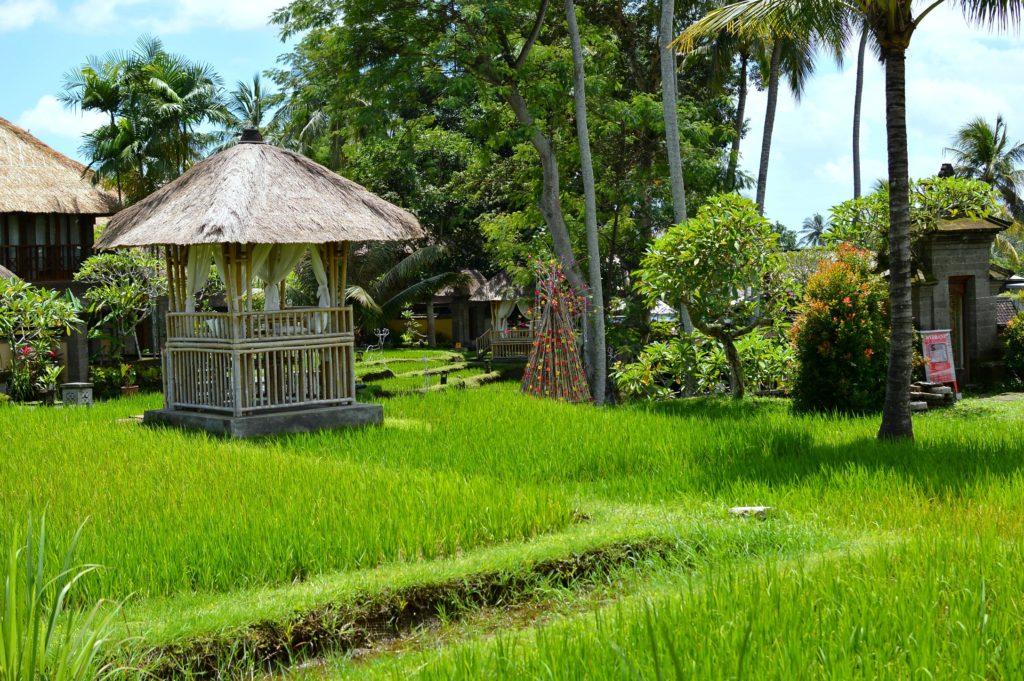 Kamandalu hotel Bali ubud