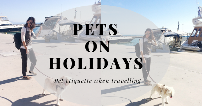 pets on holidays cover